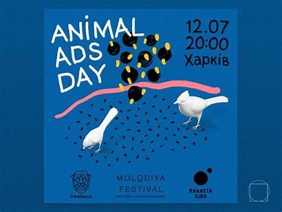 Ads Animal Dribbble Animals Save Ukraine Advertising