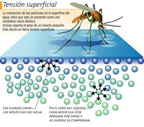 Tension Superficial  Física Termodinamica