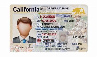 License Template Fake California Driver Psd Drivers
