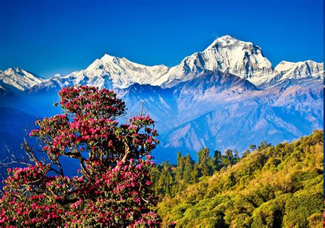 Nepal Wallpaper (60+ Images
