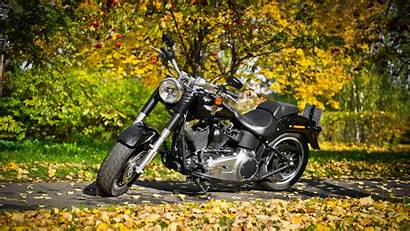 Harley Davidson Motorcycle Wallpapers Bikes 4k Backgrounds