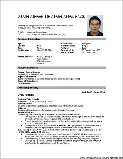 professional resume format    samples