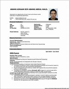professional resume format download pdf free samples With free resume pdf