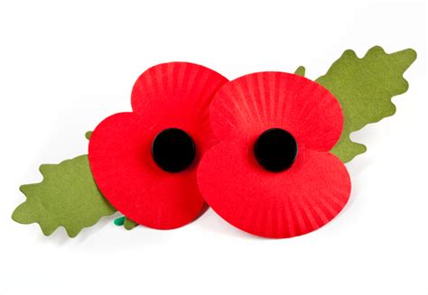 pictures of remembrance day poppies lakesiders support poppies 4 kits initiative against airbus bala town fc