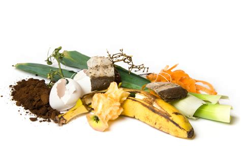 how to compost 5 steps of composting composting guide