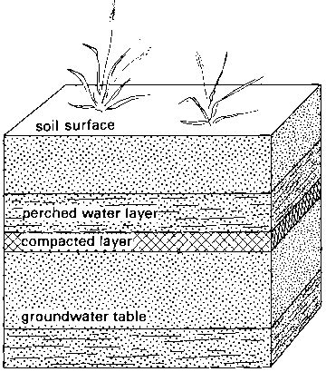 how deep is the water table where i live chapter 2 soil and water