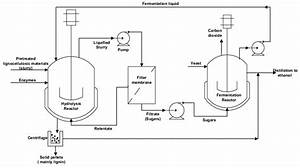 Schematic Representation Of The Process Flow Diagram For