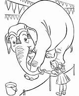 Coloring Elephant Circus Pages Feed Ball Standing Nuts Draw Waving sketch template