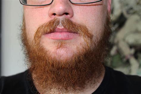 Chin Curtain Jeffs Beard Board by Carabus My Beard Struggling 4 Month