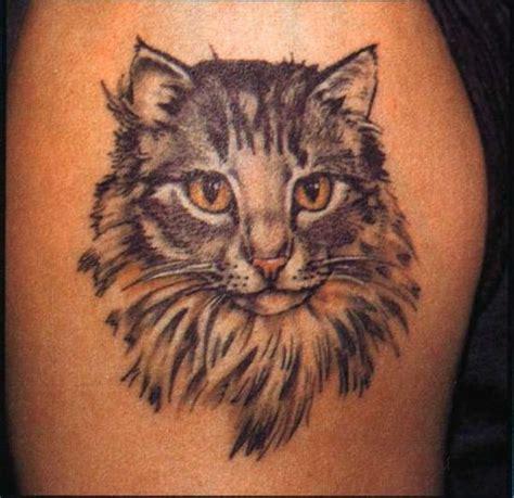 animals tattoos  tattoo designs ideas art cat