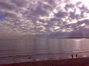 photo8.jpg - Picture of Swansea Beach, Swansea - TripAdvisor