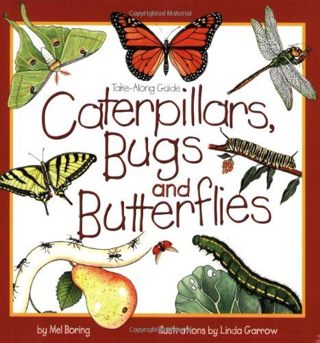 butterfly books for children butterfly study unit 740 | 61RxWspYaAL