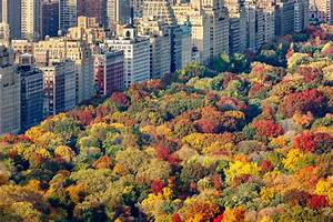 Autumn in New York: How to Experience the Essential NYC in