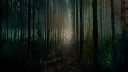 Spooky Halloween Forest Desktop Background Wallpapers Scary