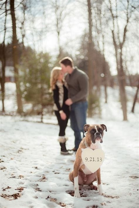 winter engagement photo ideas  warm  heart deer