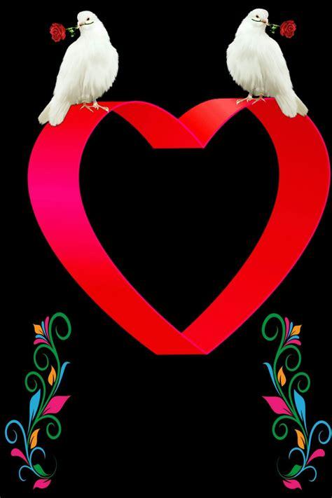 pin  aparna  editor   art dove images heart