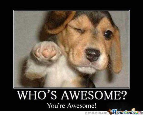 You Re Awesome Meme - you re awesome by bas15 meme center
