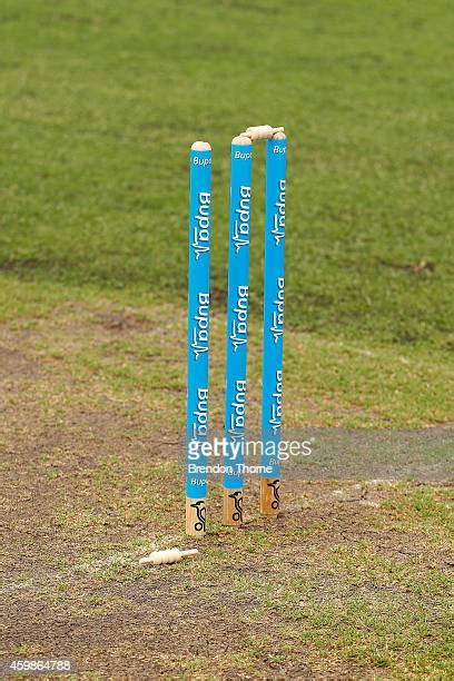 bail cricket stump stock   pictures getty images