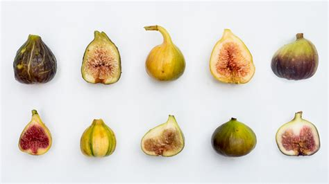 types of figs five figs friday varieties to try this fall the horticult