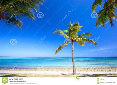 Paradise Beach Stock Photography  Image 35255672