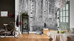 fototapeten natur im fototapeten shop wall artde With balkon teppich mit national geographic tapete