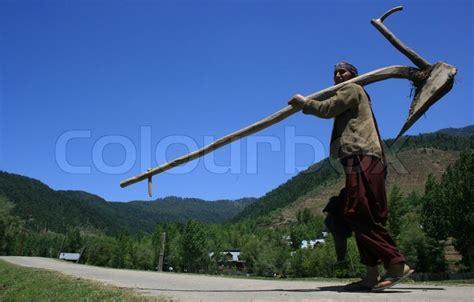 kashmiri woman farmer   agriculture tool plought