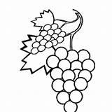 Grapes Coloring Grape Juice Weintrauben Ausmalbilder Designlooter Sweet Template Letzte Seite sketch template