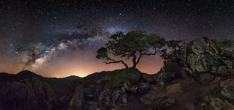 Nature Landscape Starry Night Milky Way Trees