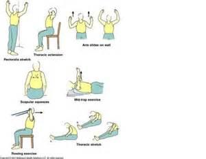Chin Stand Yoga by Back Strengthening Exercises Upper Back Strengthening