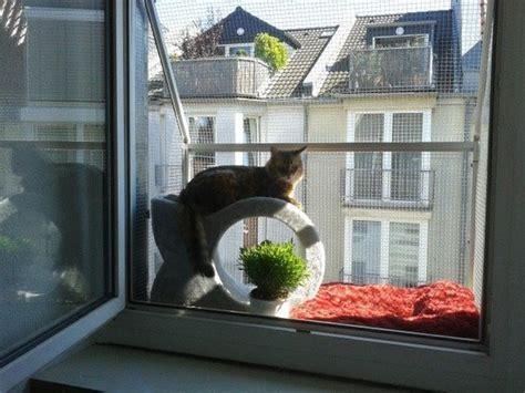 fenster katzensicher machen die besten 25 balkon katzensicher ideen auf balkon katzensicher machen kratzbaum