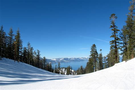 lake tahoe vacation resort front desk phone number marriott 39 s timber lodge timeshare resorts south lake