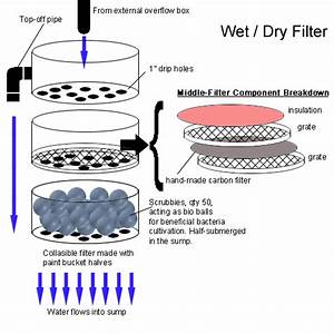 Custom Aquatic Turtle Wet    Dry Filter Schematic