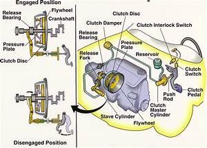 Car Clutch Diagram  Car  Free Engine Image For User Manual
