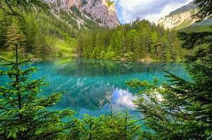 Nature, Landscape, Green, Lake, Mountain, Forest