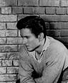 John Drew Barrymore - Wikipedia