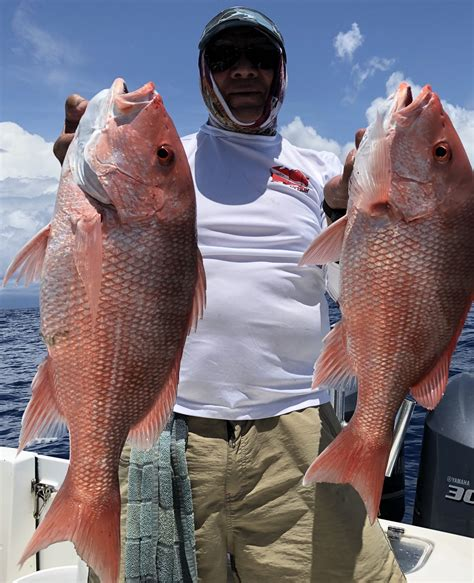 fishing snapper grounds middle trips florida clearwater sea deep round charters trip long american fl fisheye