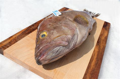 grouper fish whole baked fillet benefit eat recipe