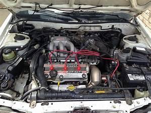 1995 Toyota T100 Dx 4x4 Regular Cab 5 Od