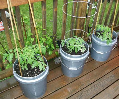 Container Vegetable Gardening Ideas, Vegetable Gardening