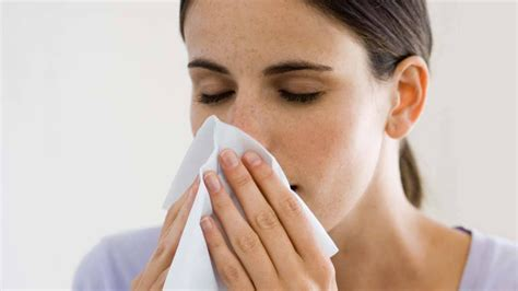 I Have A Chronic Runny Nose What's Going On?  The Globe. Residential Treatment For Eating Disorders. Real Estate Attorney Harrisburg Pa. Charleston Sc Cooking Classes. Domain Registration Cn Ce Certification Cost. Weight Loss Spa Resort Nyc Nutrition Programs. Corero Network Security Mml Investors Services. Lasik Eye Surgery Omaha Solar Power Resources. Best Appointment Scheduler My College Career