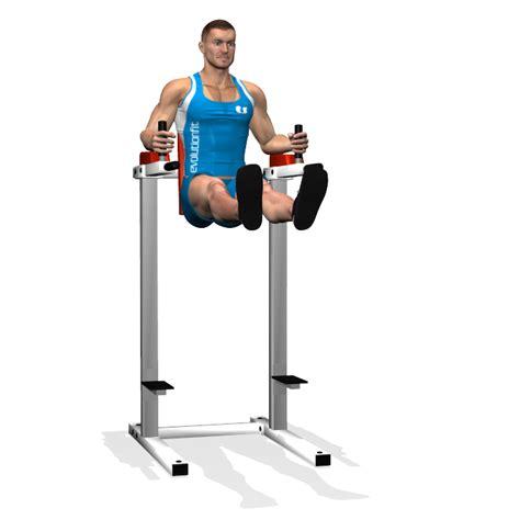 exercice chaise evolutionfit releve de jambes droits a la chaise romaine