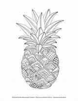 Pineapple Coloring Fruit Printable Fruits Mandala Web Adult Zentangle Mandalas Animal Abstract Drawing Lovesmag Pop Tombowusa Bc Cartoon Excellent Browning sketch template