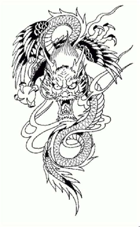 TATTOOS: Dragon Tattoo Stencils # 3