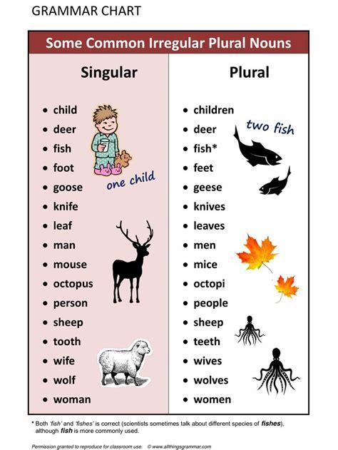 grammar some common irregular plural nouns www