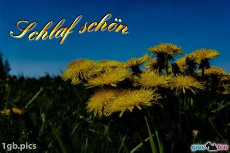 Schlaf Schon Bilder by Schlaf Sch 246 N Bilder G 228 Stebuchbilder Gb Pics 1gb Pics