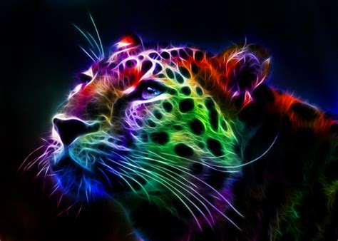 Colourful Animal Wallpaper - colorful fractal cheetah cats animals background