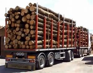 Bois De Chauffage Gratuit : grossiste bois de chauffage pas cher bois de chauffage ~ Melissatoandfro.com Idées de Décoration