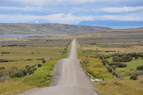 grasslands road grassland wikipedia