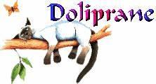 Coussin Tete De Lit Gifi : chat sur une branche fatigue mal de tete doliprane image ~ Dailycaller-alerts.com Idées de Décoration