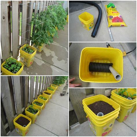 diy self watering container garden